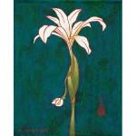 McKenzie River White Orchid