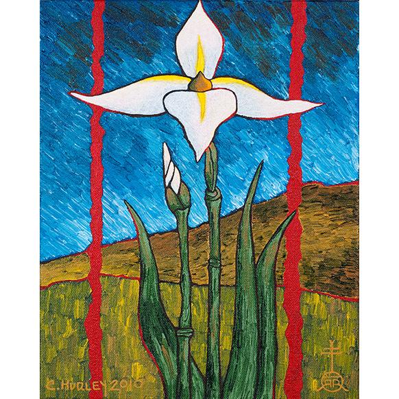 43-Knostic-Truth-Iris
