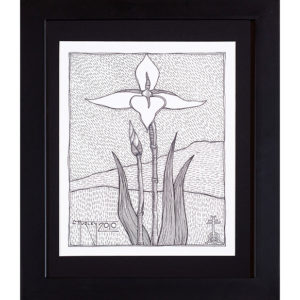 Iris Drawing India Ink on Paper